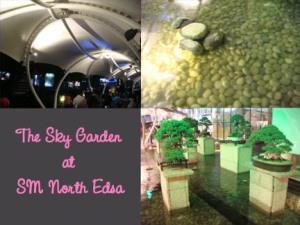 skygarden 04