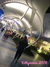 skygarden 05