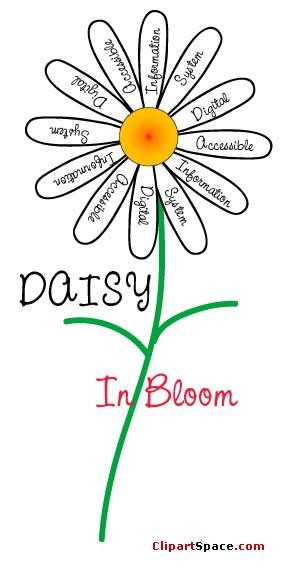 daisy pic02