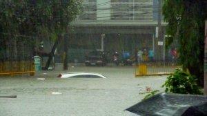 Area around Xavier School, Greenhills, San Juan