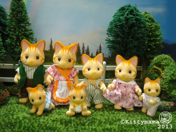 Cats- Ginger