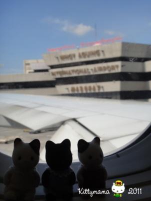 Three Little Kittens Adventure 01