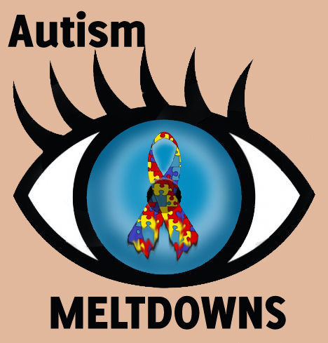 Image result for autistic meltdown adults