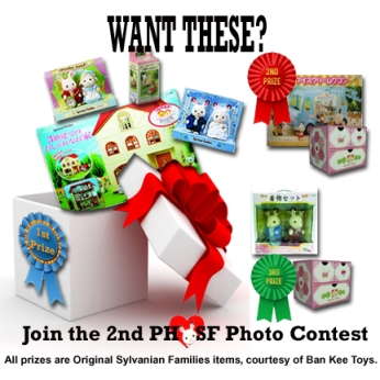 PHSF Photo Contest 2013 03 copy