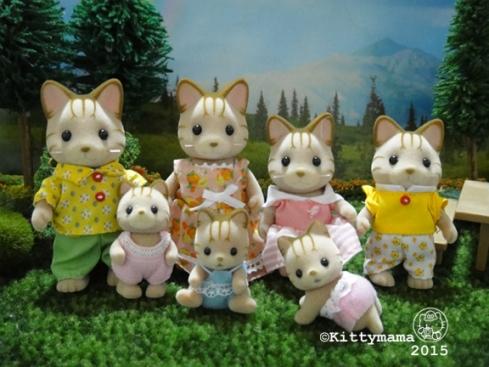 New SF 0315 03 JP Caramel Cats